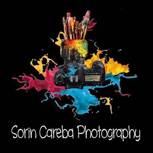 Fotograf Nunta Sorin Careba
